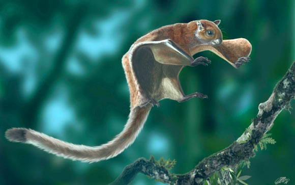 Animal Powered 3: Flying Squirrel